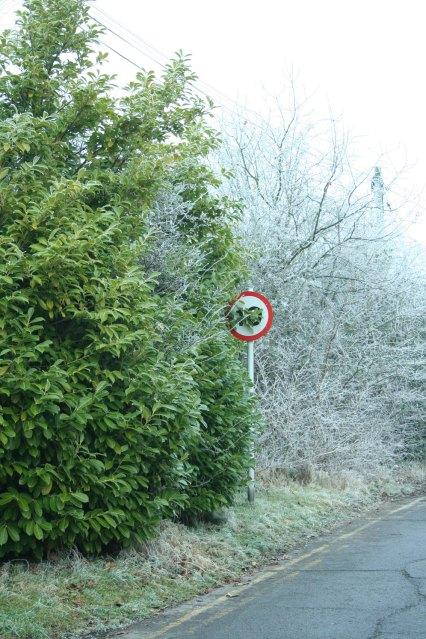 frostsign1